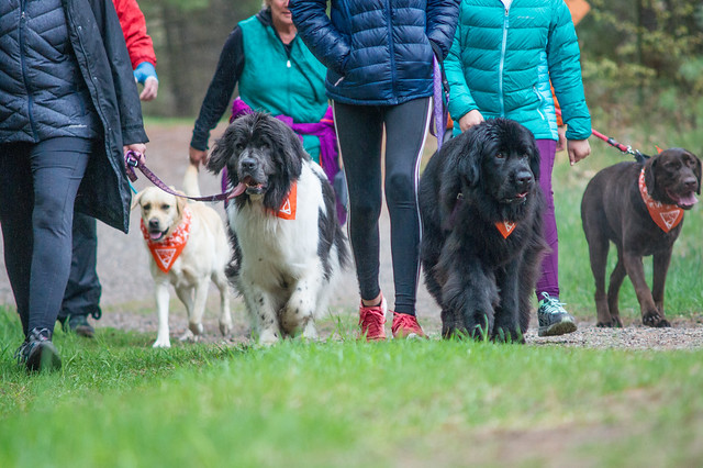 11th Annual Tails to Trails